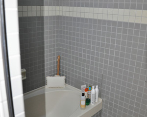 Before: an institutional-style master bath that echoed like a cave.