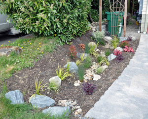 A rain garden to the north of the cottage helps handle runoff from the roof and provides attractive landscaping at the same time.